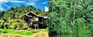 Lore Lindu Palu Sulawesi Tengah